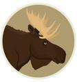 brown moose forest wildlife round frame animal vector image