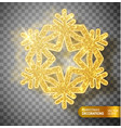 christmas decoration gold snowflake on a vector image