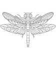 dragonfly coloring page vector image
