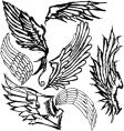 hand-drawn wings vector image
