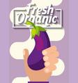 hand holding vegetable fresh organic eggplant vector image