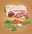 pork with tasty sauces and spices vector image vector image