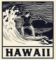 vintage surf print tee graphic design vector image