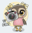 cartoon owl with a camera on a blue background vector image