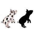 cute playful piglet vector image