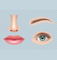 face parts realistic human body eyes ear nose vector image vector image