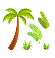 jungle leaves and grass elements set vector image vector image
