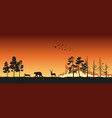 silhouettes of animals on wildfire background vector image vector image