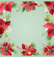 christmas winter poinsettia flowers background vector image vector image