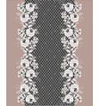 lace floral decorative border vector image