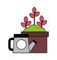 watering can and plants in pot gardening vector image