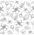 beautiful seamless pattern with hand drawn vector image