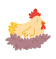 hen in nest farm animal isolated icon on white vector image vector image