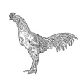 Line art of cock with coloring isolated on white vector image vector image