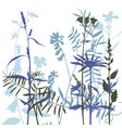 silhouettes flowers and grass vector image vector image