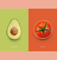 simple colorful tomato and avocado food template vector image vector image