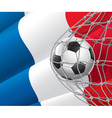 Soccer goal and France flag vector image vector image