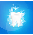 Tooth And Bokeh vector image