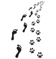 footprints of feet and paws vector image vector image