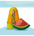 fruits fresh organic healthy watermelon papaya vector image vector image