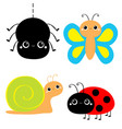 insect set ladybug ladybird butterfly spider lady vector image vector image