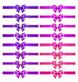 realistic purple and pink bows with golden border vector image