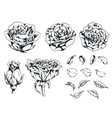 silhouette rose handdrawn flower floral monochrome vector image vector image