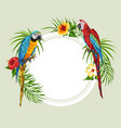 tropical background with parrots vector image vector image