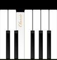 Top view piano keys Musical instrument vector image