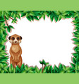 a lemur in nature frame vector image vector image