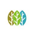 circle green leaf logo template vector image