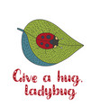 cute hand ector drawn card with a ladybug vector image vector image