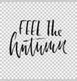 feel the autumn hand drawn dry brush lettering vector image