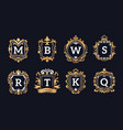 monogram logos luxury calligraphic elegant gold vector image