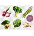 vegetables transparent set vector image vector image
