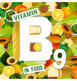 vitamin b9 background vector image vector image