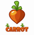 cartoon smiley carrot in the shape hear lovely vector image vector image