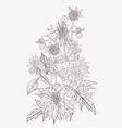 hand drawn summer vintage bouquet rustic dahlia vector image vector image