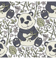 panda bear with bamboo hand vector image