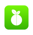 round apple icon digital green vector image vector image