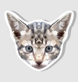 sticker kitten head on geometric art style vector image vector image