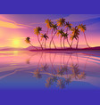 beautiful seaside sunset decline ocean palm vector image