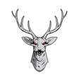 contour of a deer skull with antlers vector image vector image