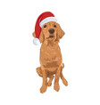 golden retriever cute puppy wearing santa hat vector image