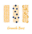granola bars caramel with grain berries nuts vector image vector image