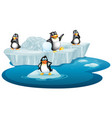 isolated picture penguins on ice vector image vector image
