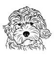 portrait a dog breed golden vector image vector image