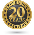 20 years experience gold label vector image vector image
