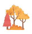 autumn trees bush nature foliage isolated icon vector image