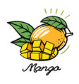 bright mango with leaves in outline vector image vector image